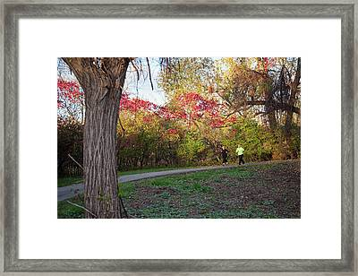 Joggers In Parkland In Autumn Framed Print by Jim West