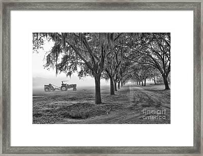 John Deer Tractor And The Avenue Of Oaks Framed Print by Scott Hansen