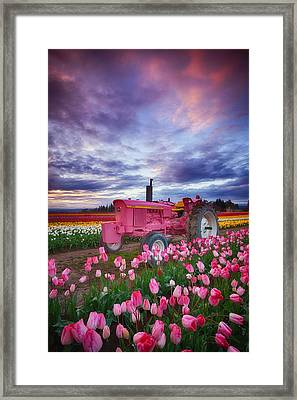 John Deere Pink Framed Print by Darren  White
