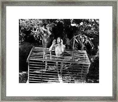 Johnny Weissmuller In Tarzan And The Amazons  Framed Print by Silver Screen