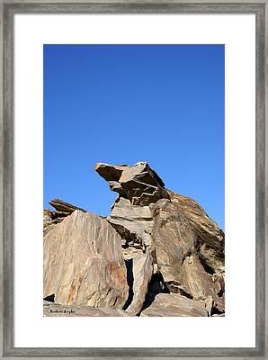 Joshua Tree Monster Rock Framed Print by Barbara Snyder