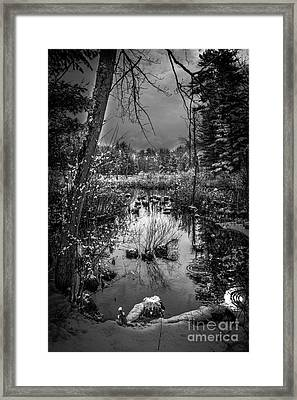 Journey To Hope Framed Print by Sue OConnor