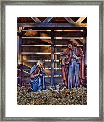 Joy And Gladness Framed Print by Nikolyn McDonald