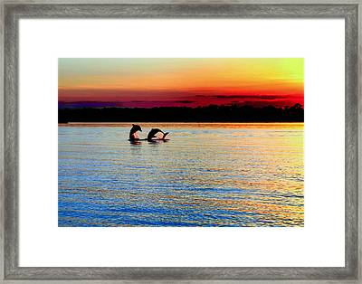 Joy Of The Dance Framed Print by Karen Wiles