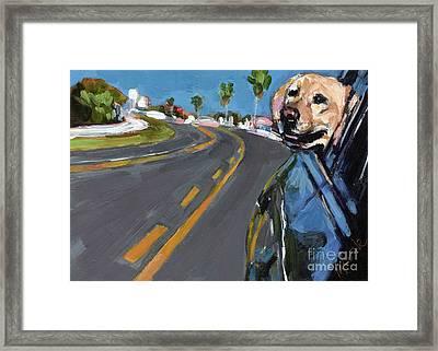Joy Ride Framed Print by Molly Poole