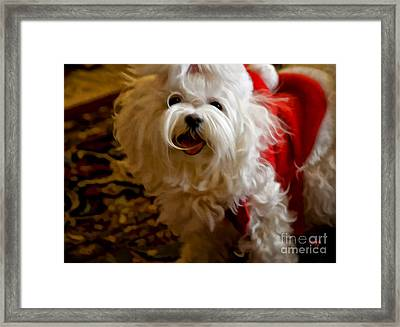 Joy To The World Framed Print by Lois Bryan