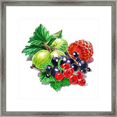 Juicy Berry Mix  Framed Print by Irina Sztukowski