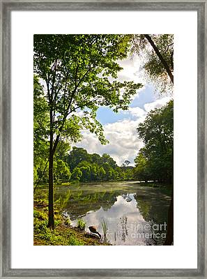 July Fourth Duck Pond With Goose Framed Print by Byron Varvarigos