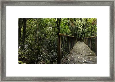 Jungle Bridge Framed Print by Les Cunliffe