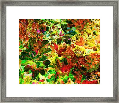 Jungle Fantasy Framed Print by Ann Johndro-Collins