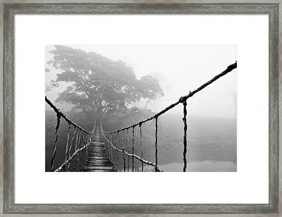 Jungle Journey 5 Framed Print by Skip Nall