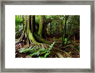 Jungle Trunks2 Framed Print by Les Cunliffe
