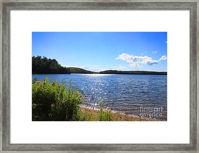 Just A Summer Day  Framed Print by Cathy  Beharriell