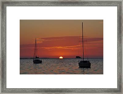 Just Another Day In Paradise Framed Print by Bill Cannon