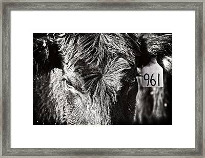 Just Another Number Framed Print by Lincoln Rogers