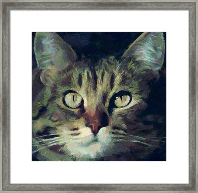 Just Be Careful Framed Print by Yury Malkov