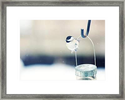 Just Hold On Framed Print by Kay Pickens