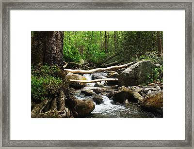 Just Outside Of Gatlinburg Framed Print by Mountain Dreams