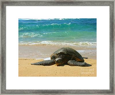 Just Resting Framed Print by Christine Stack