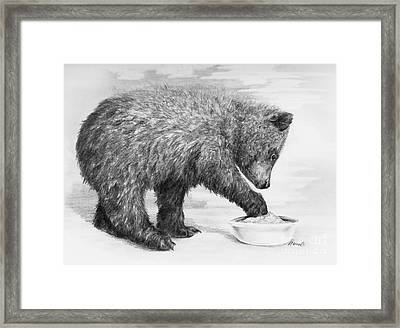 Just Right Framed Print by Meagan  Visser