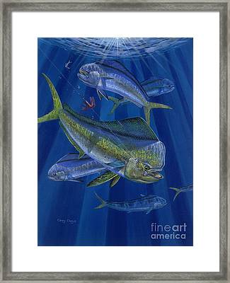 Just Taken Off0025 Framed Print by Carey Chen