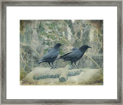 Just The Two Of Us Framed Print by Gothicolors Donna Snyder
