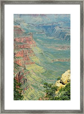 Kaibab Trail View Grand Canyon National Park Framed Print by Shawn O'Brien