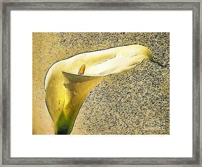 Kala Flower Framed Print by Odon Czintos