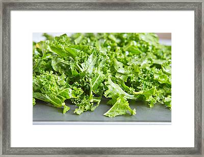 Kale Leaves Framed Print by Tom Gowanlock
