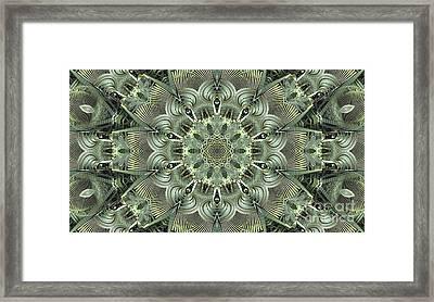Kaleidoscope 71 Framed Print by Ron Bissett