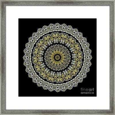 Kaleidoscope Ernst Haeckl Sea Life Series Steampunk Feel Framed Print by Amy Cicconi