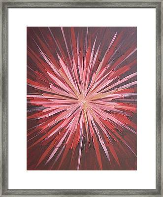 Kaleidoscope Framed Print by Kate McTavish