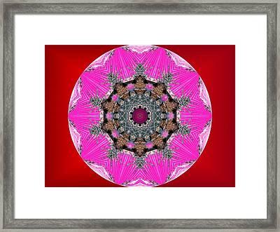 Kaleidoscope Framed Print by Mike Breau