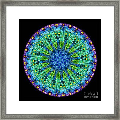 Kaleidoscope Peacock Framed Print by Amy Cicconi