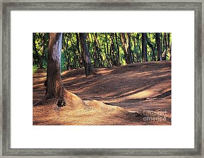 Kaloli Point 2 Framed Print by Ellen Cotton