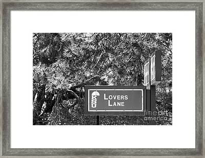 Kansas State University Lovers Lane Framed Print by University Icons