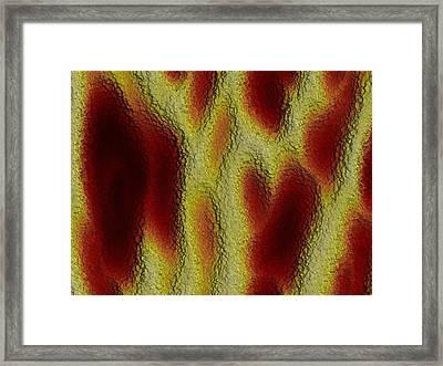 Kasin Framed Print by Jeff Iverson