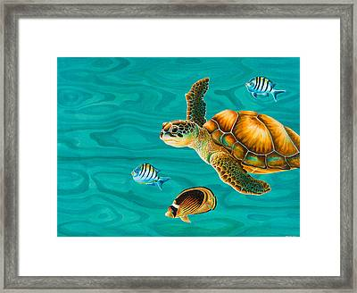 Kauila Sea Turtle Framed Print by Emily Brantley