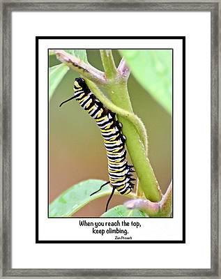 Keep Climbing Framed Print by Kerri Farley