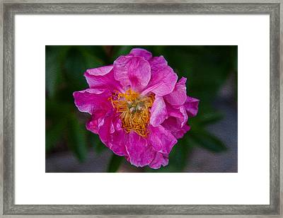 Keeper Of The Light Framed Print by Omaste Witkowski