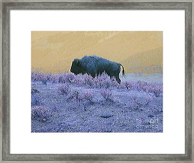 Keeper Of The Prairie Framed Print by Ann Johndro-Collins