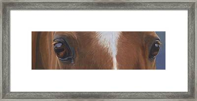 Keeper's Eyes Framed Print by Alecia Underhill