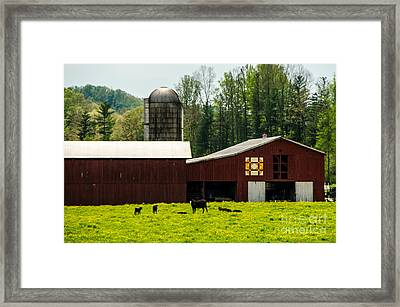 Kentucky Barn Quilt - 1 Framed Print by Mary Carol Story