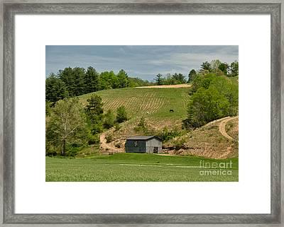 Kentucky Barn Quilt - Americana Star 2 Framed Print by Mary Carol Story