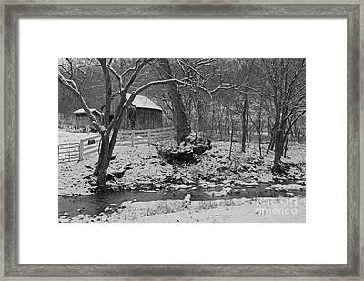 Kentucky Snow Framed Print by Mary Carol Story