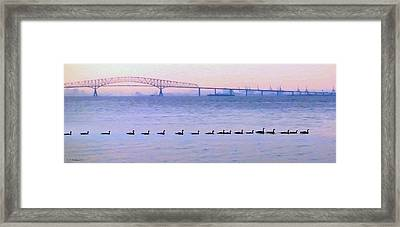 Key Bridge And Waterfowl Framed Print by Brian Wallace