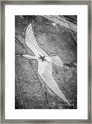 Key West African Cemetery 2 - Key West - Black And White Framed Print by Ian Monk