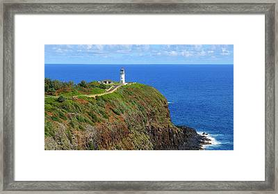 Kilauea Point National Wildlife Refuge Framed Print by Douglas Peebles