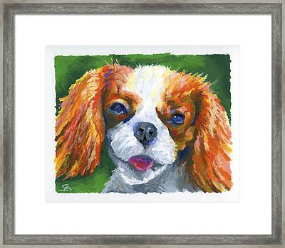 King Charles Framed Print by Stephen Anderson