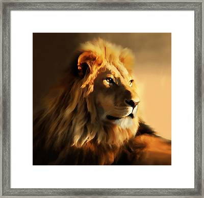 King Lion Of Africa Framed Print by Georgiana Romanovna